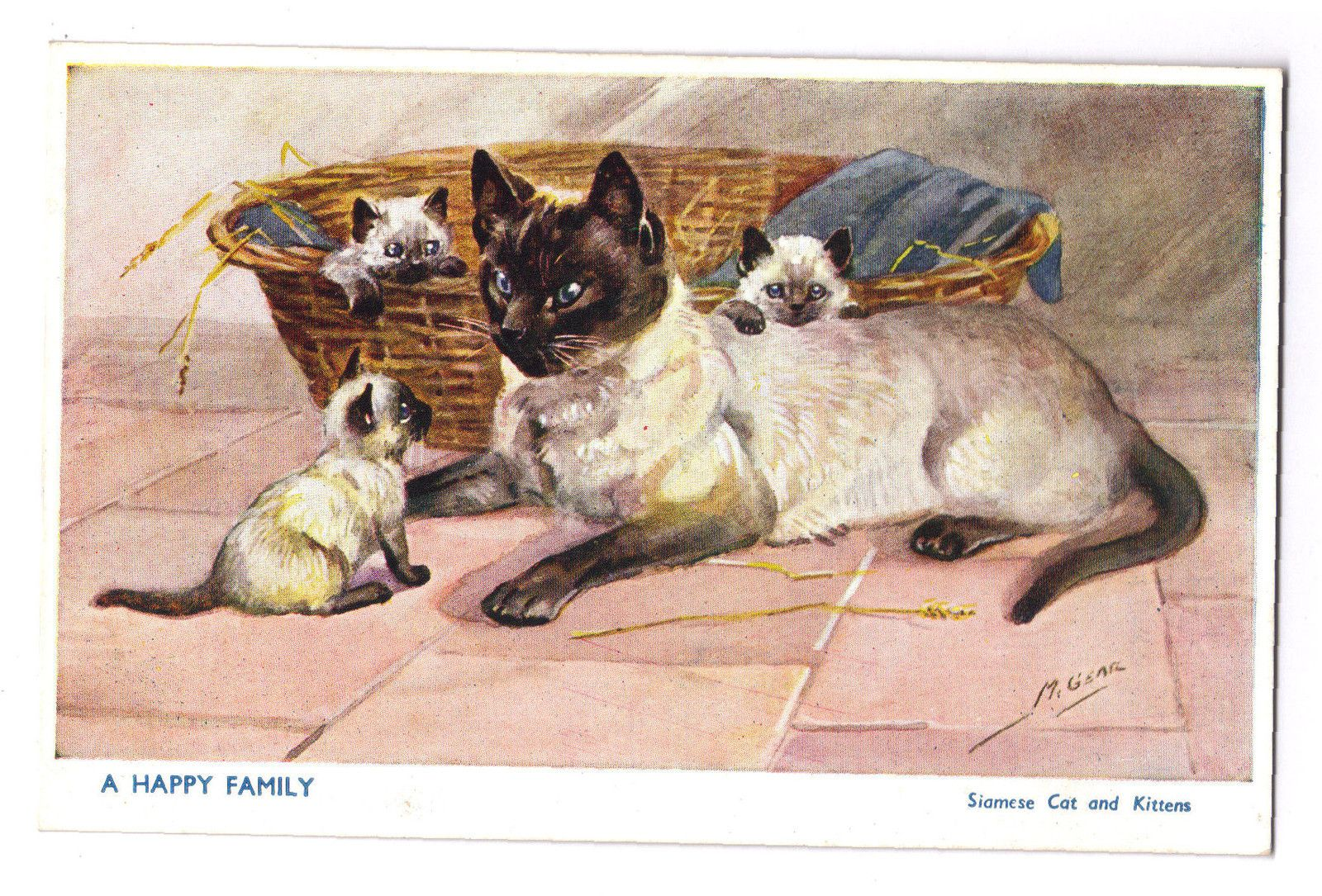 Mabel Gear 5070 Postcard A Happy Family Siamese Cats And Kittens