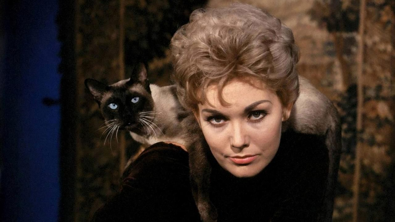 Bewitched Astonishing Facts Revealed About The Cast And Crew Page 5 Kim Novak Cat Movie Kim