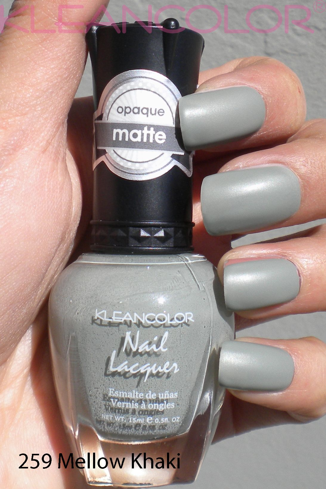 255 Savvy Pink #mattepolish #matte #polish | Matte Nail Lacquer ...