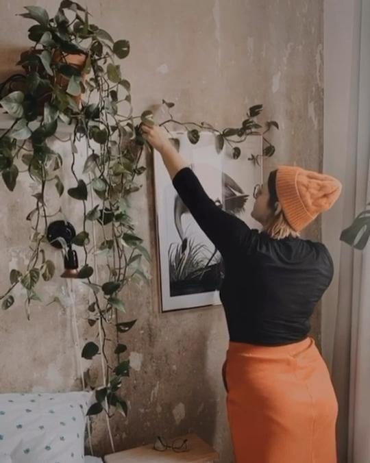 Photo of Einrichtungs-SOS – Fridlaa hilft Dir bei der Einrichtung deines Wohntraums