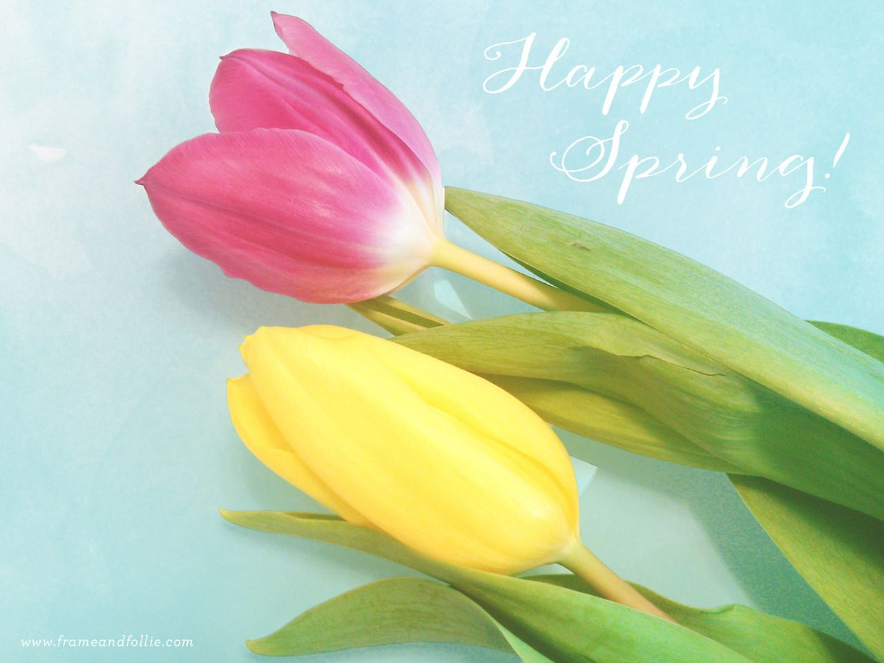 HAPPY SPRING! ~ Spring has sprung, and not a moment too soon! Wishing everyone a wonderful start to the season!