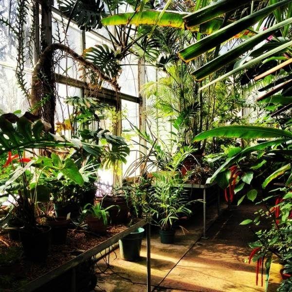 Haus-Garten Begrünung-Indoor Verglasung-Pflanzenquartier ...