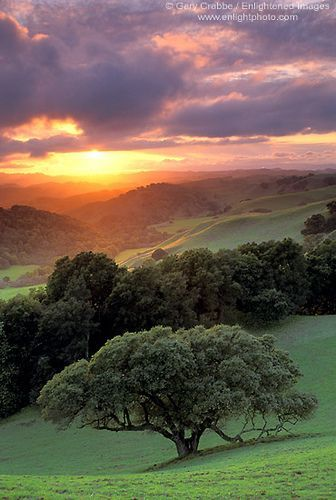 """""""Brionne's Sunset"""" ~ By enlightphoto on Flickr. Contra Costa County, California ~ Gary Crabbe/Enlightened Images"""