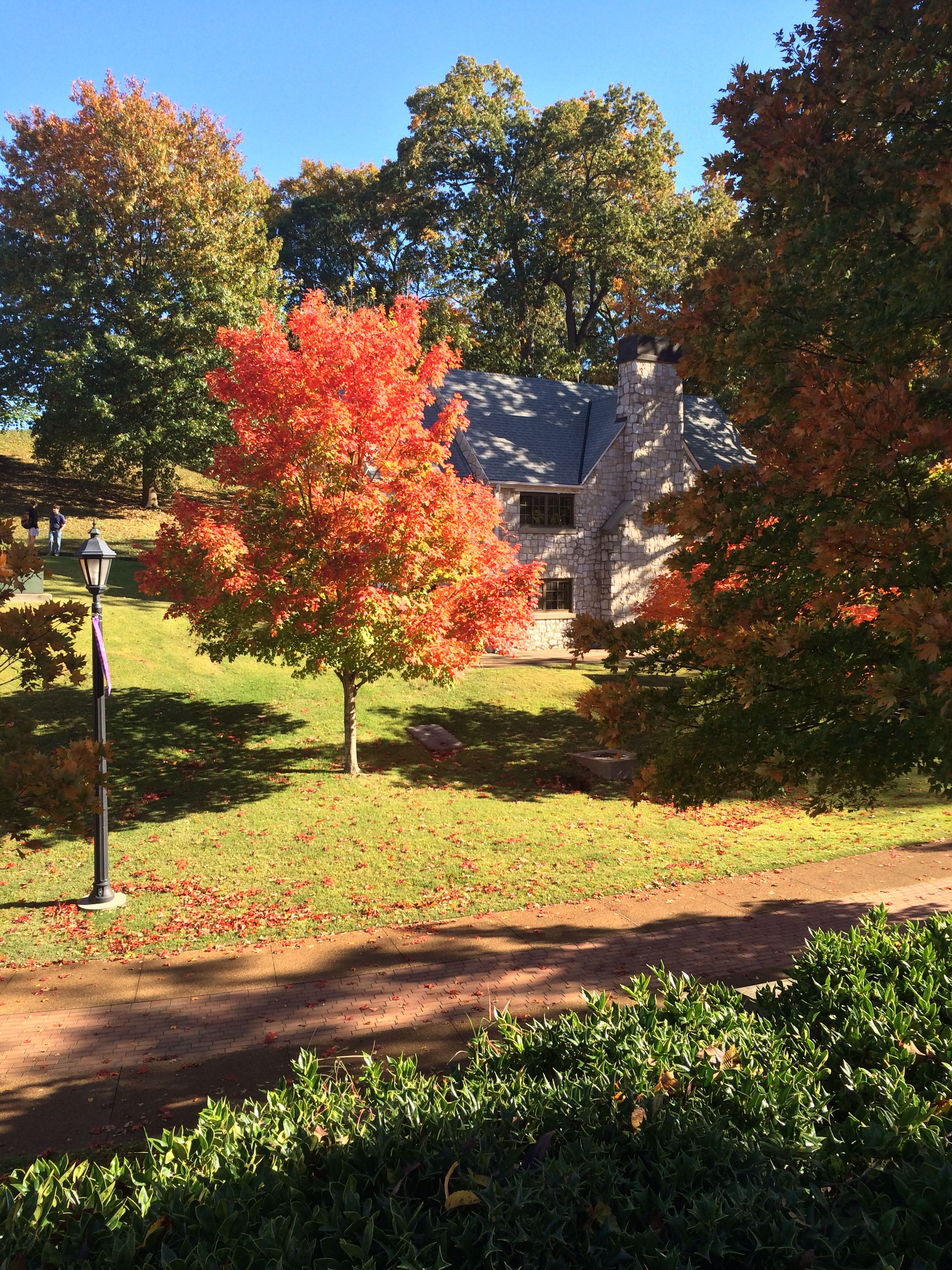 Fall On The Campus Of The University Of North Alabama Una