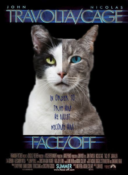 Cat Movie Posters Google Search Cat Movie Cats Dog Cat