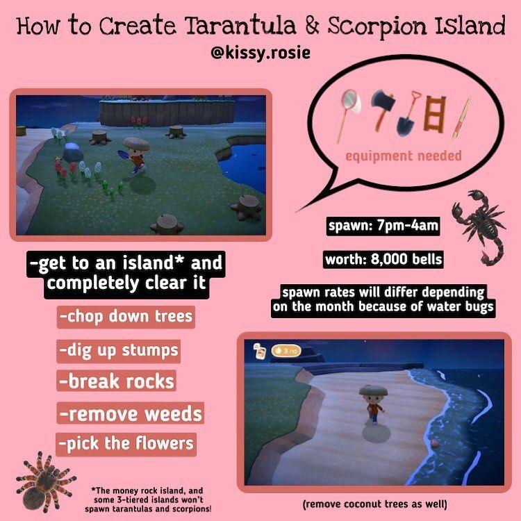 Manila Clams On Instagram How To Make Any Island Tarantula Scorpion Island I Hope This Helps Y Animal Crossing 3ds Animal Crossing Animal Crossing Memes