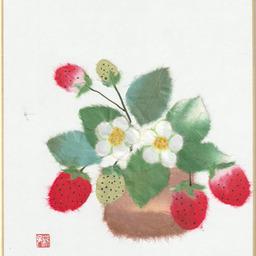 おばあちゃまと呼ばれたい の画像 In Plants Image