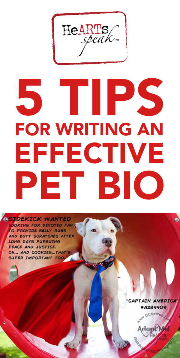 5 Tips For Writing An Effective Pet Bio Hearts Speak Animal Shelter Foster Dog Shelter Dogs