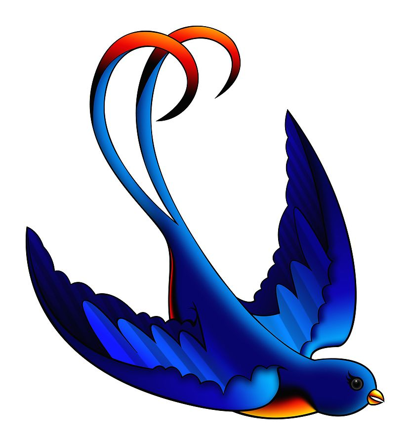 Bluebird Of Happiness Meaning Bluebird Bluebirds Are Symbolic Of