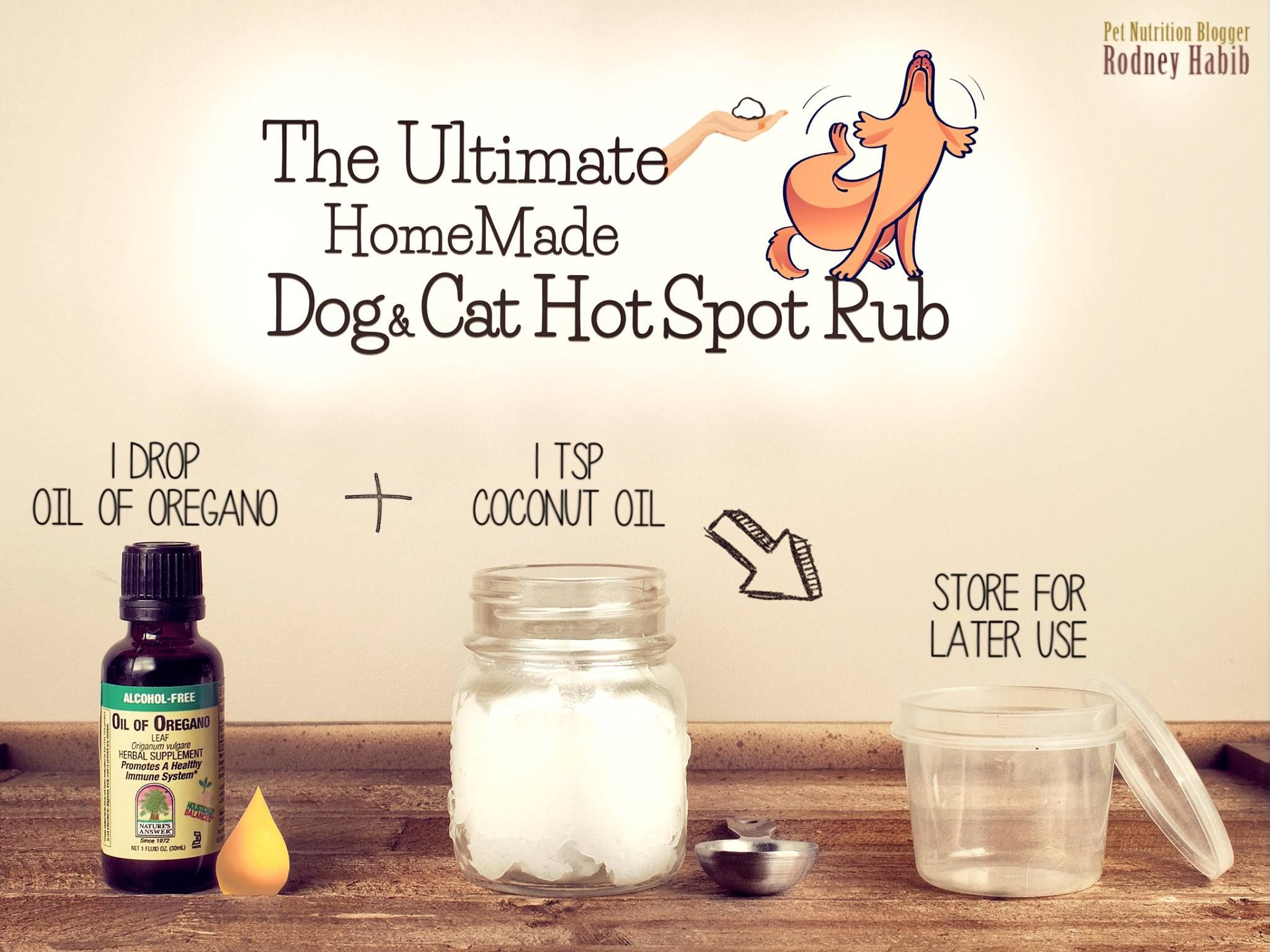 Best Home Remedy To Treat Hot Spots In Dogs Dogs Home Remedies