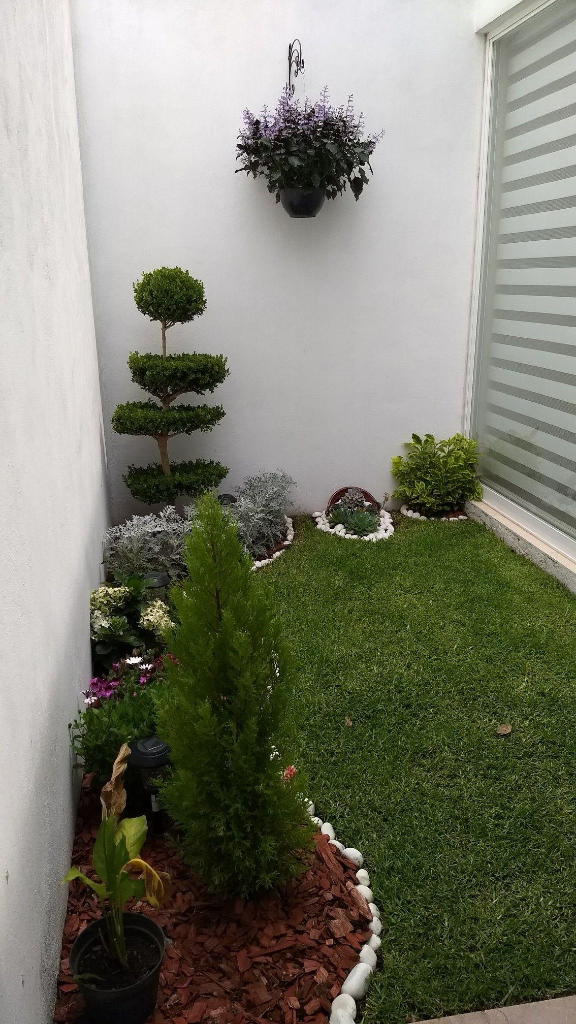 Jardim Jardines Proyectos De Jardin Jardines Pequenos