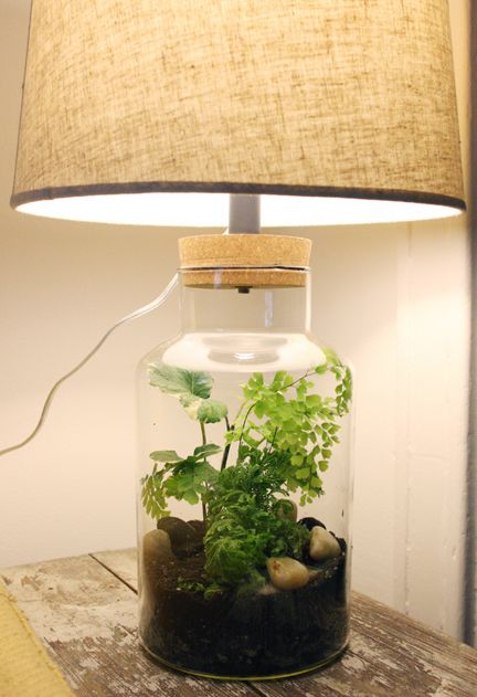 Home Rain Forest Love It Plant Decor Diy Table Lamp Forest Decor