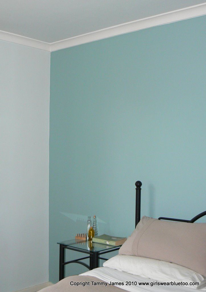 After Dulux Duck Egg Blue Duck Egg Blue Living Room Feature Wall Bedroom Blue Bedroom Walls