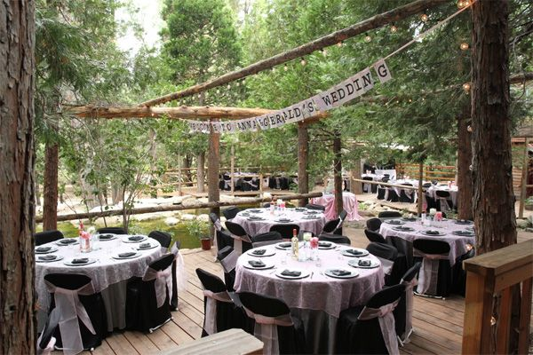 Pine Rose Cabins Forest Wedding Reception Forest Wedding Venue Cabin Wedding