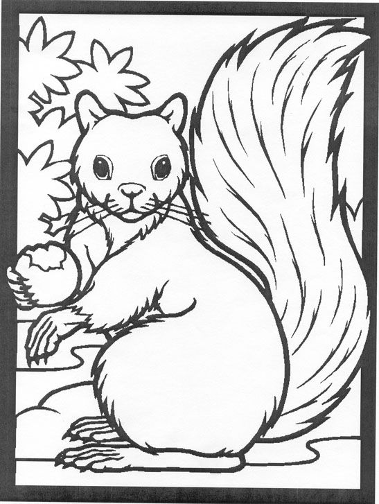 Coloring Page Squirrel Kids N Fun Embroidery Redwork 2