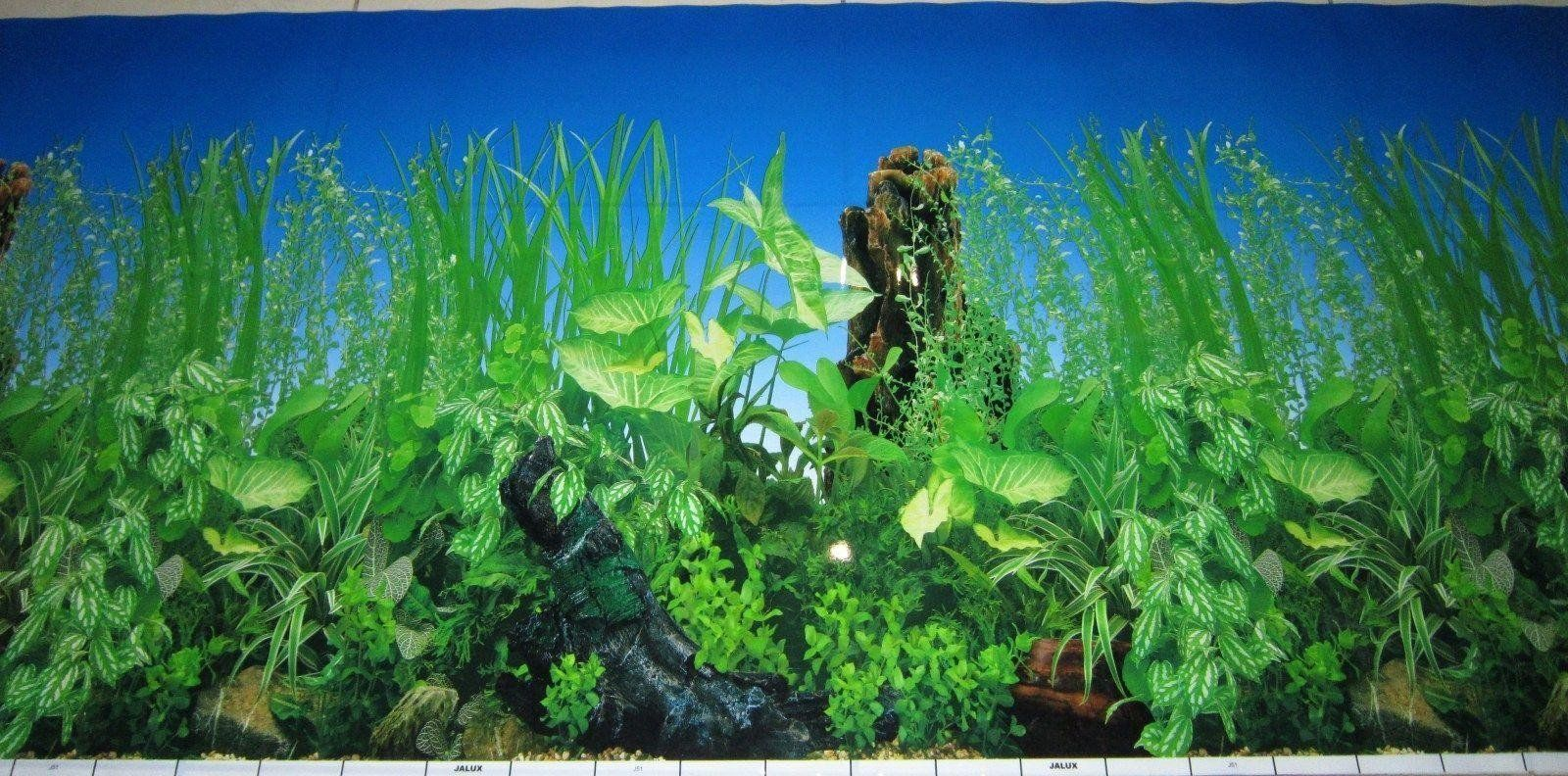 Fish Tank Background Printable Aquarium Backgrounds to ...  Printable Aquarium Background