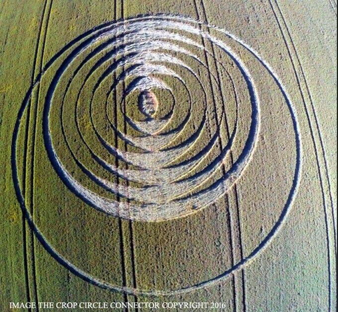 Crop Circle en Fulley Wood, nr Tichborne, Hampshire, Reino Unido fue reportado el 24 de junio 2016.