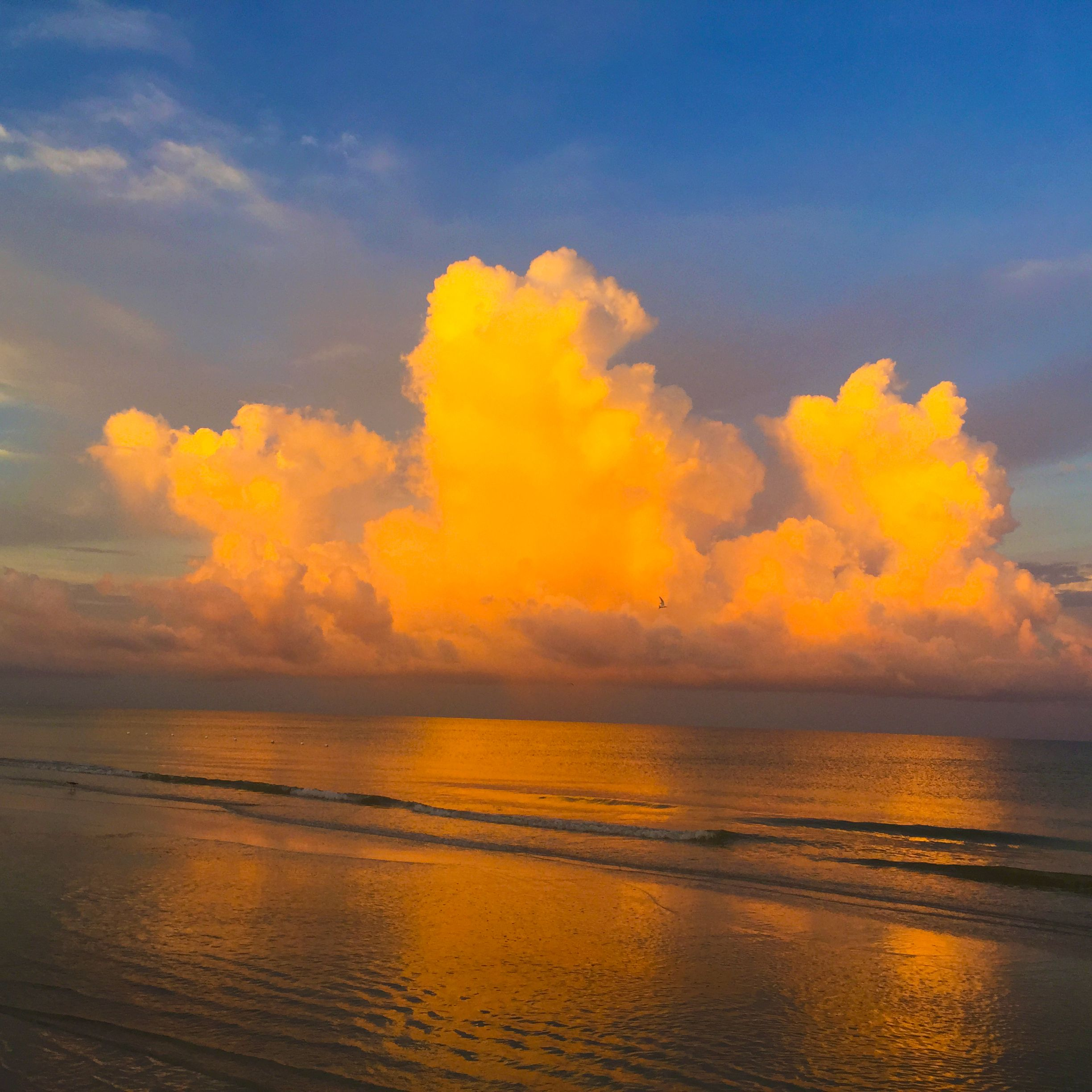 Marco Island Beaches: It Pays To Get Up At Dawn And Walk Marco Island Beach