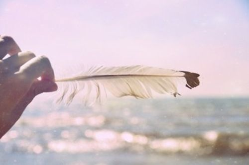 There's a time for feathers. ♥