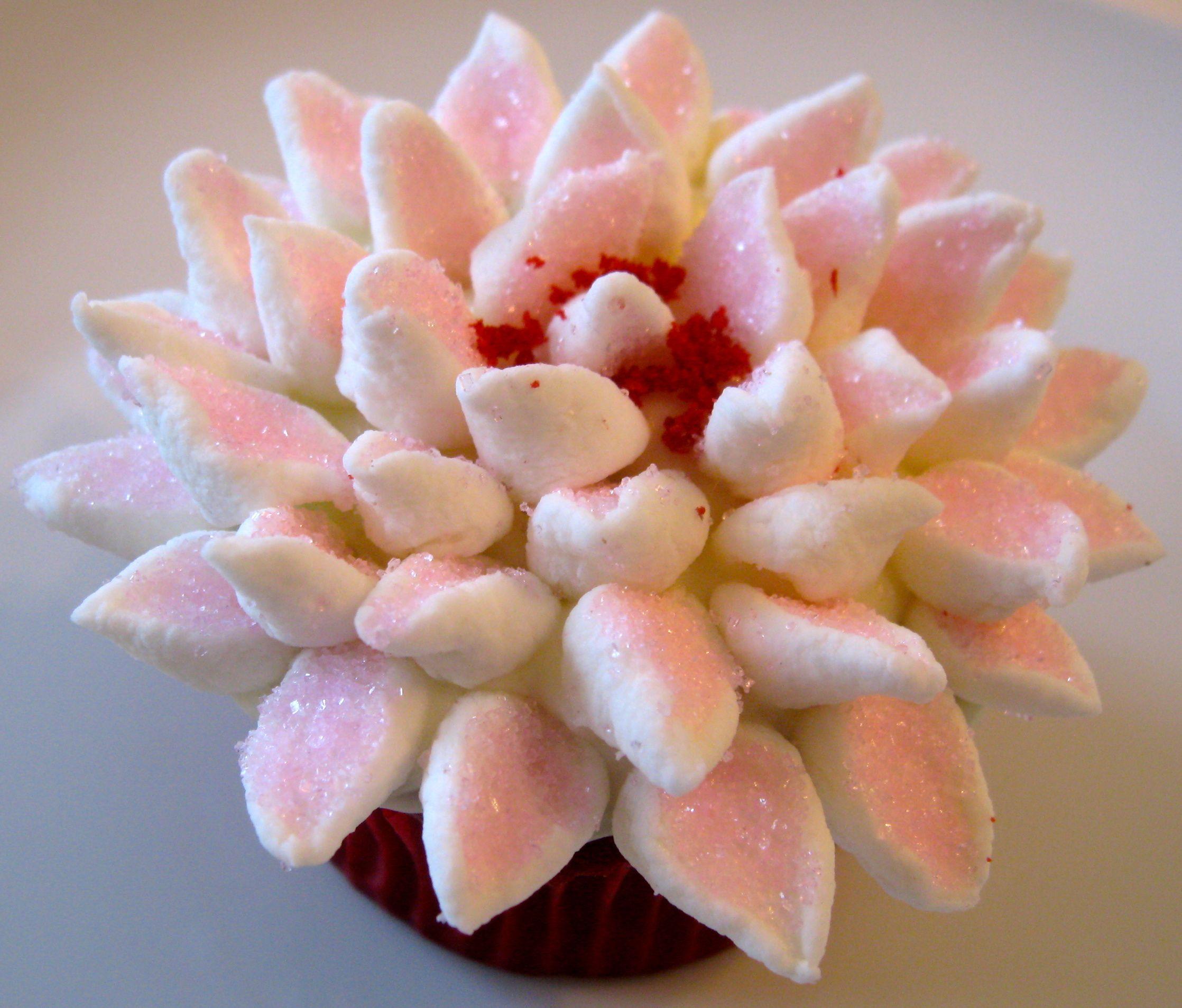 Red Velvet Birthday Cupcakes for Jamie