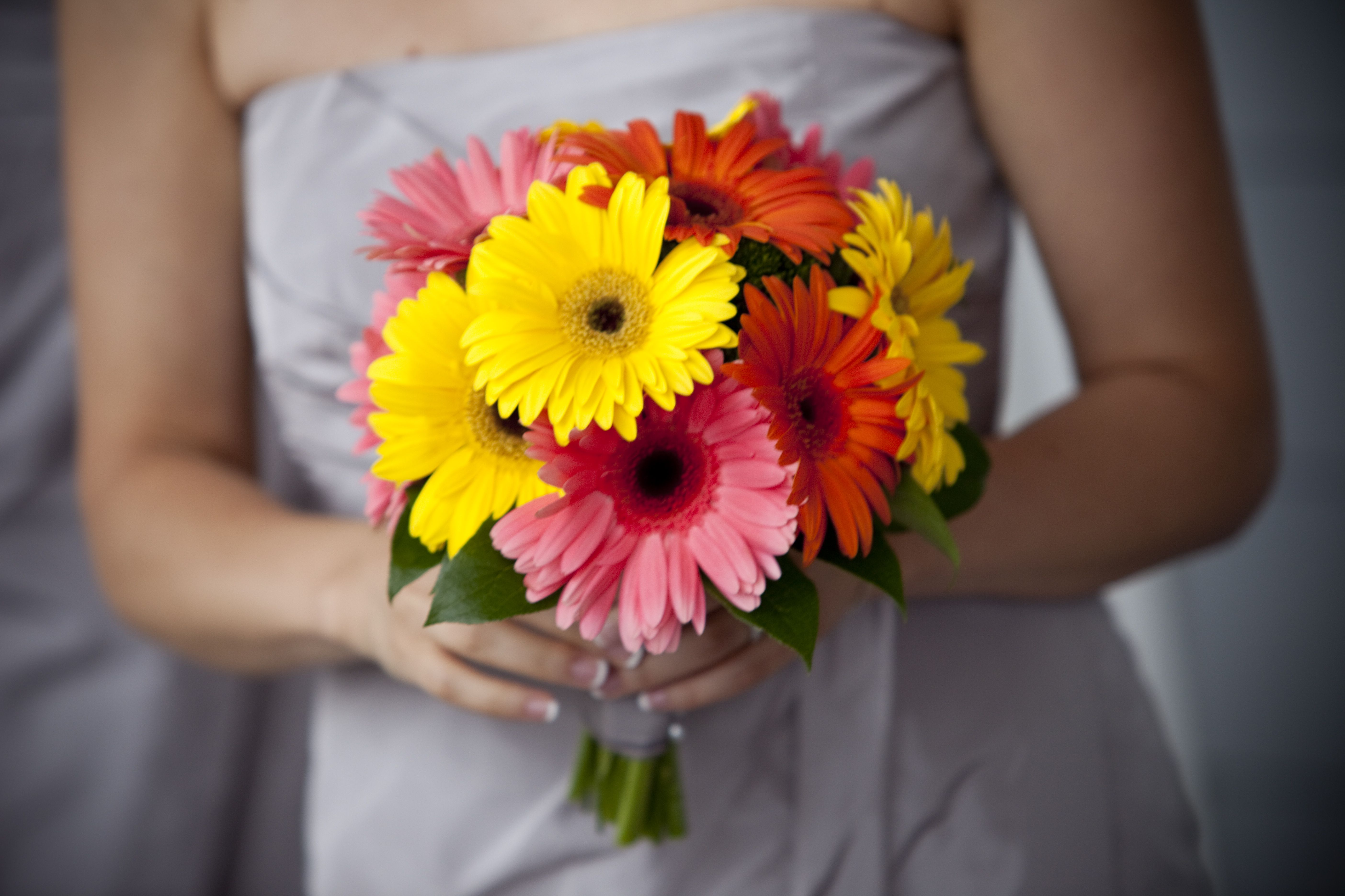 Pictures Of Gerber Daisy Wedding Bouquets 108