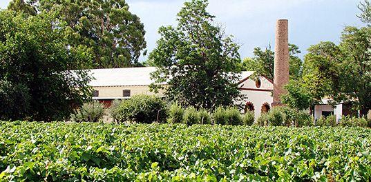 Mendoza, Lagarde winery