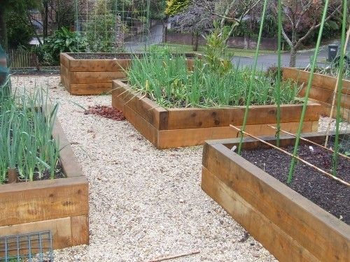 vegetable garden design australia | Raised garden beds - photos ...