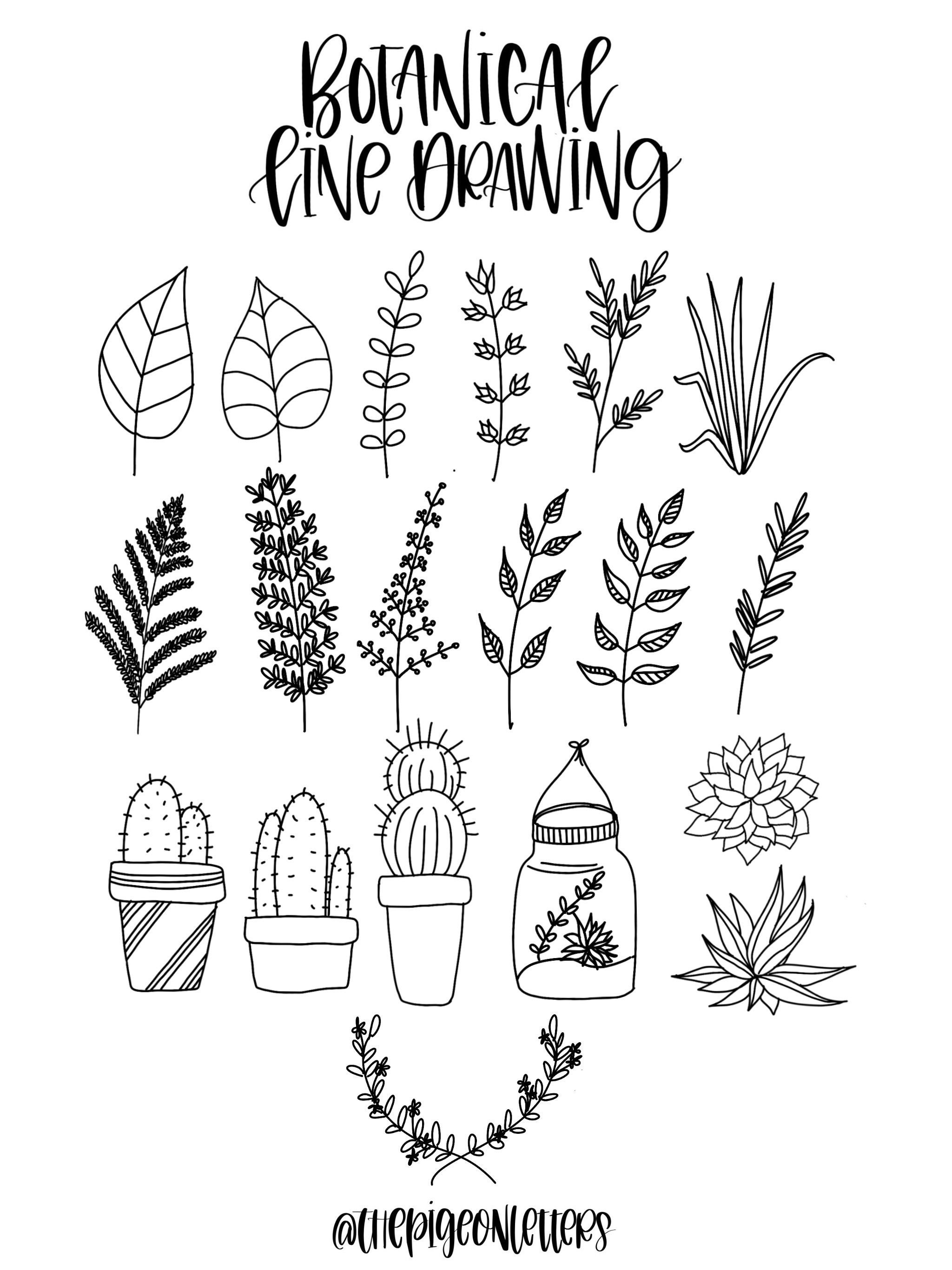 Line Drawing Plants : Doodles line drawing plants leaves bullet journal