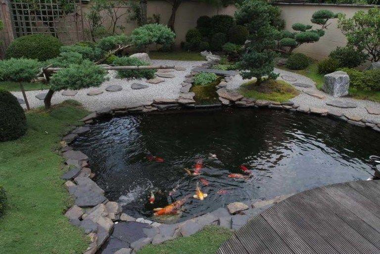 30 Beautiful Fish Ponds Design Ideas Trendhmdcr Garden Pond Design Fish Pond Gardens Fish Ponds Backyard