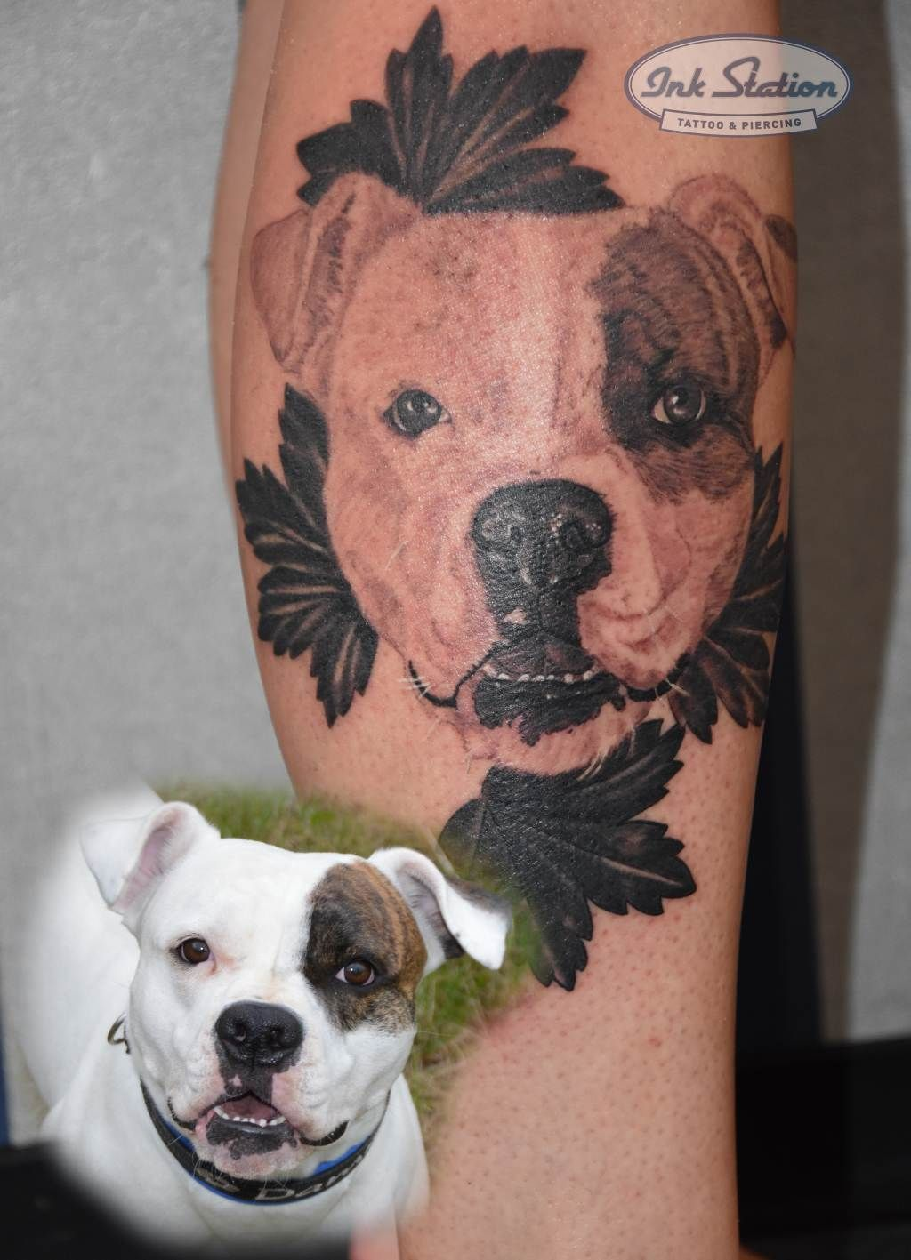 American Bulldog Portrait Tattoo From Billy From The Ink Station Stuttgart Www Ink Station Net Www Tattooentfernung Tier Tattoo Tattoo Stuttgart Tattoo Magazin