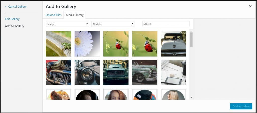 How to Add Links to the Divi Gallery Module and Show