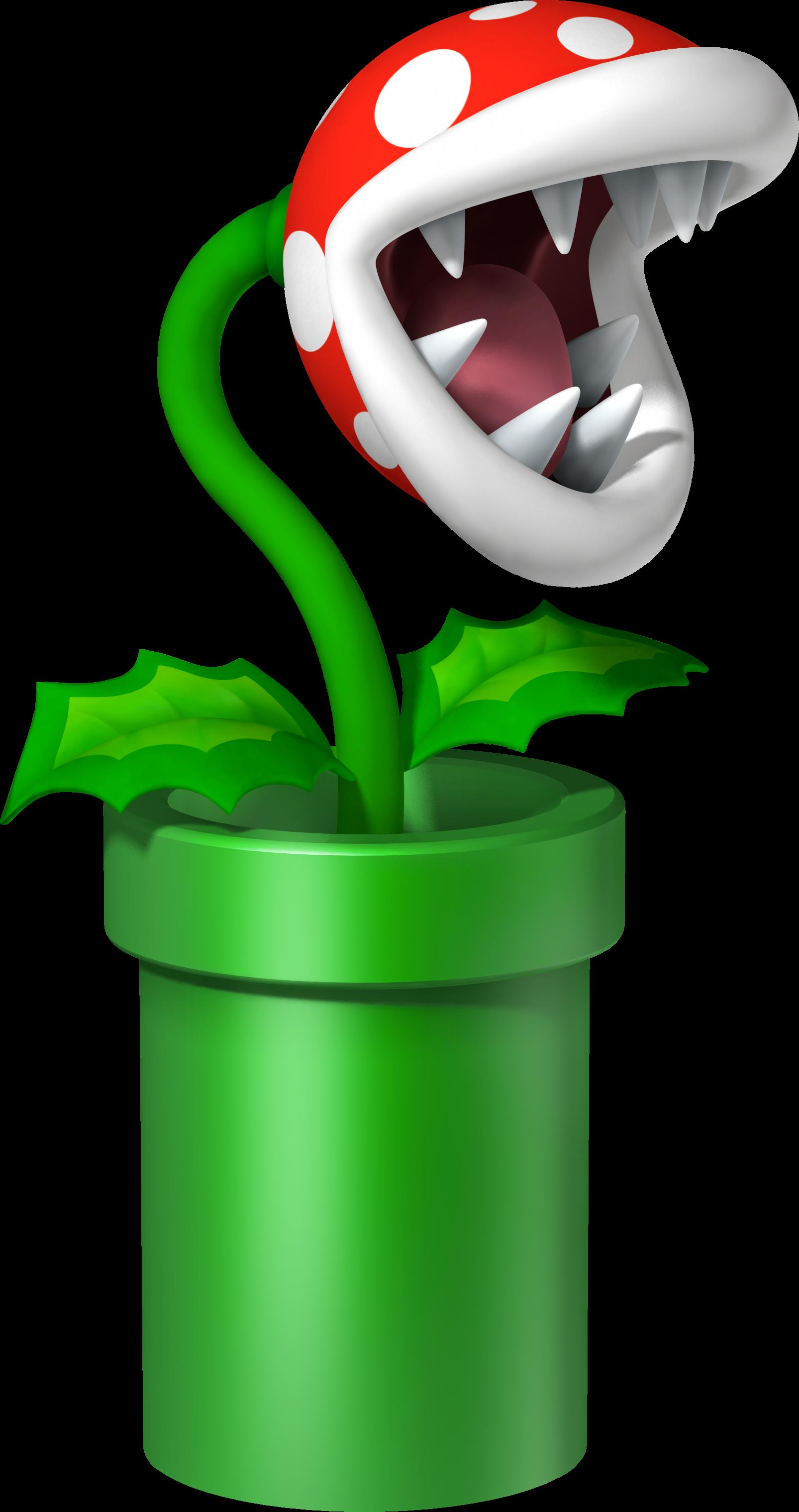 plante carnivore mario en vrai
