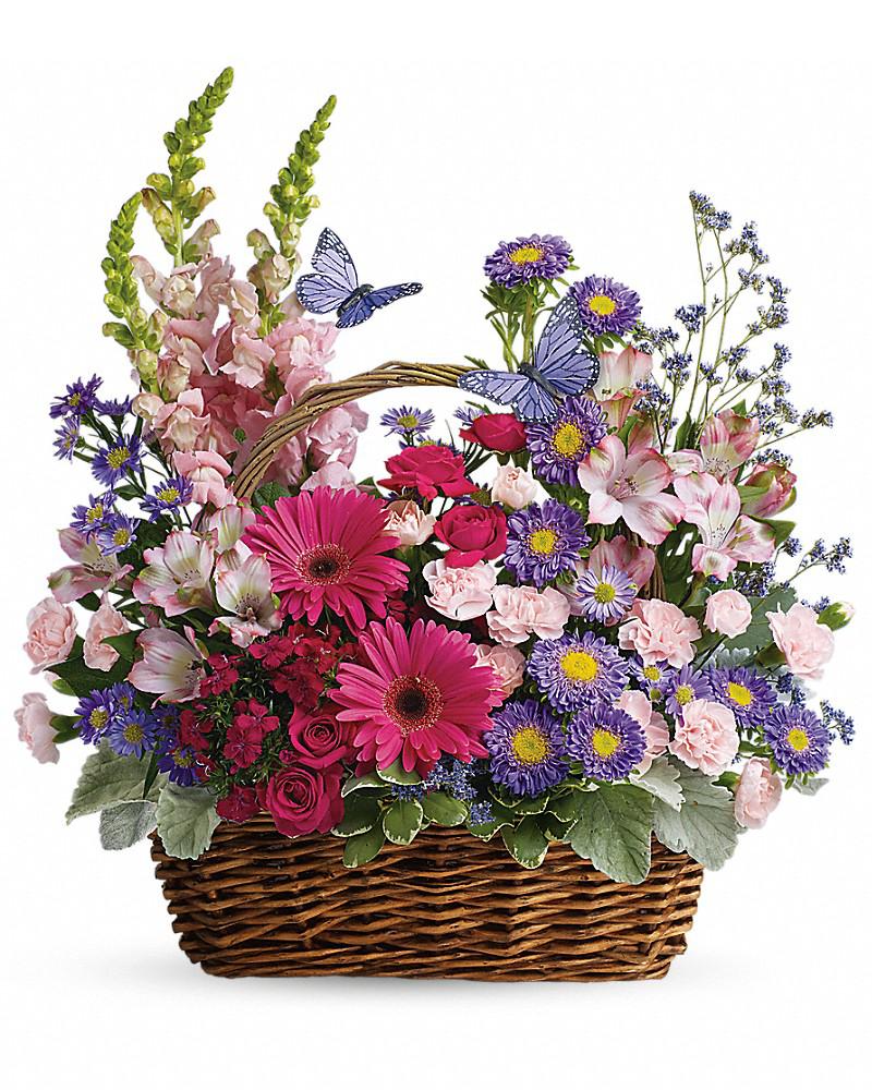 википедии полевые цветы в корзинке картинка реакции