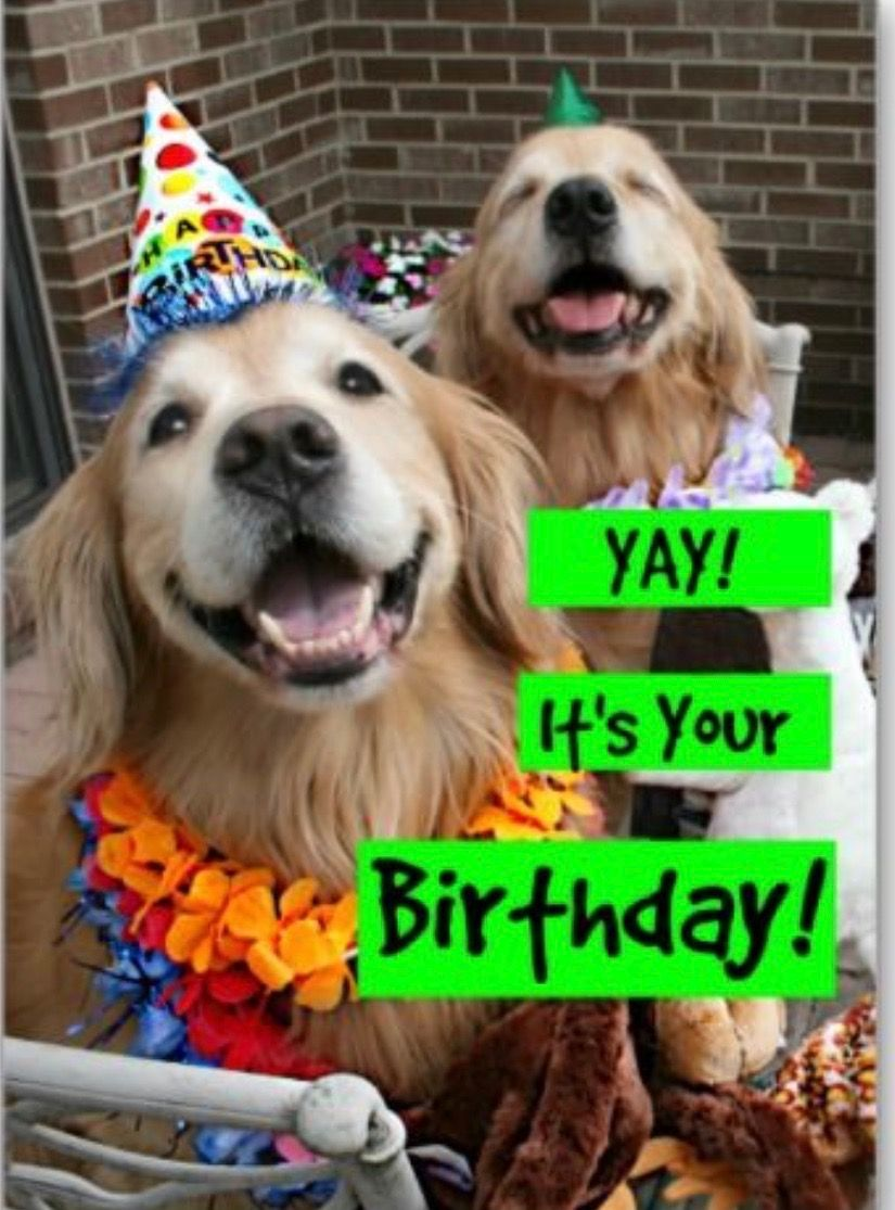 Pin By Betty Reed On Birthday Images With Images Golden