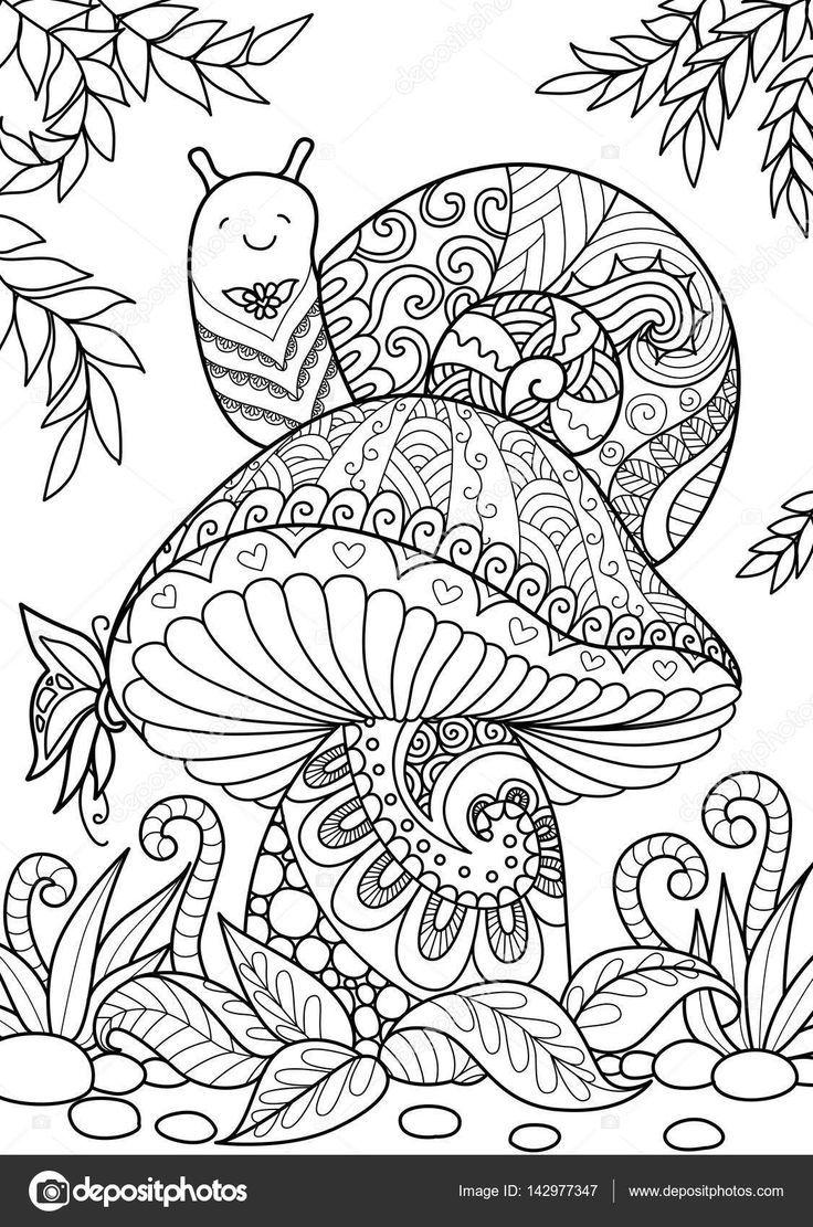 escargot sur les champignons  illustration  142977347