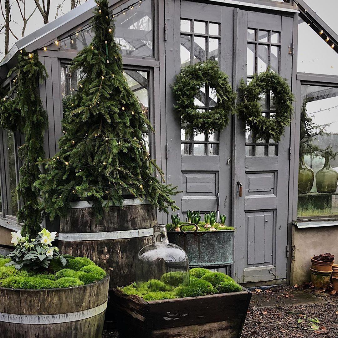 Tvååker auf Instagram: Sie waren bei Marie @hakes - Wintergarten Ideen #wintergardening
