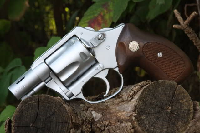 Charter Arms Bulldog Magnaport Custom Backpacker  44 Special