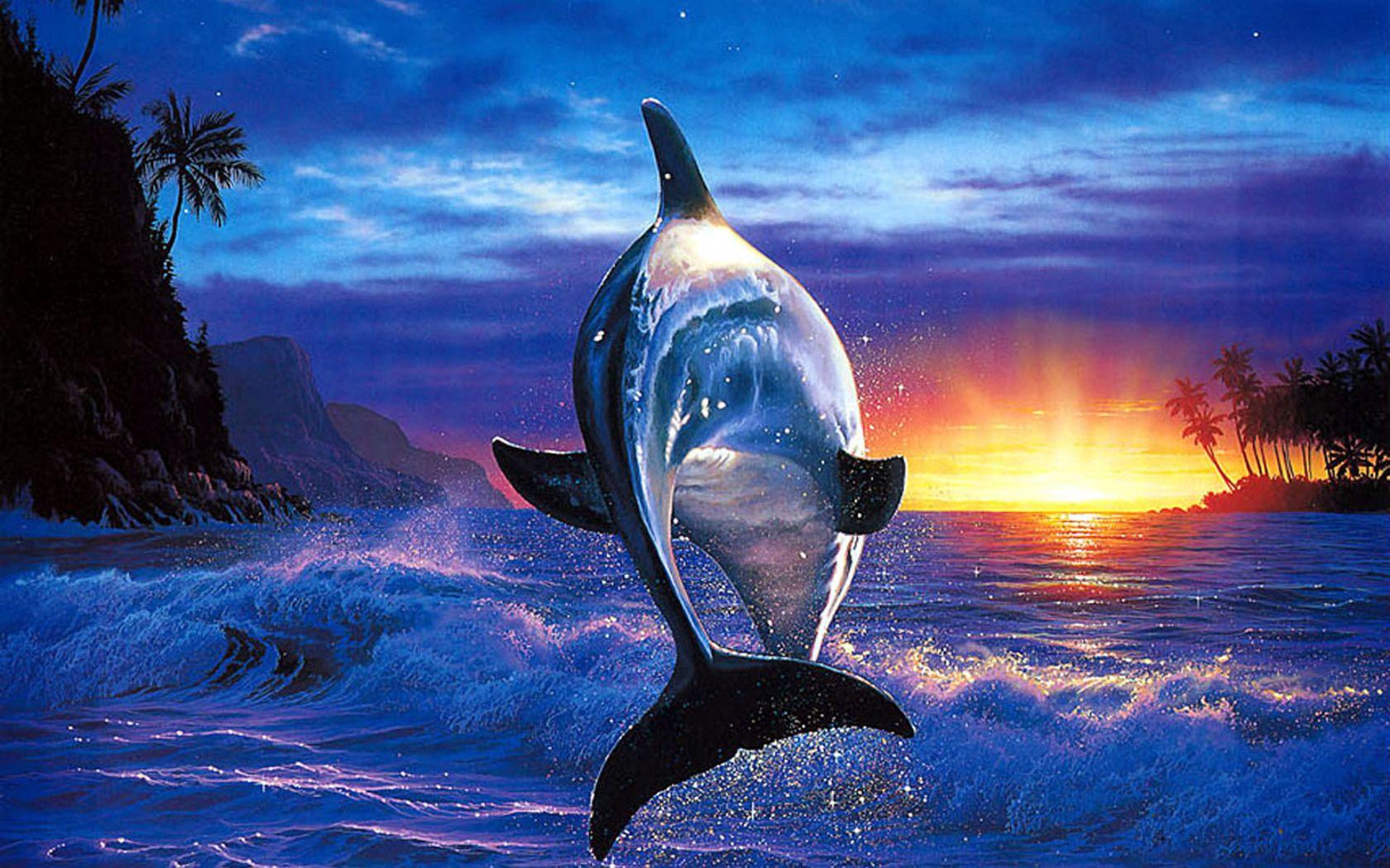 Dolphin Wallpaper Sea Blue Aquarium Beautiful Dolphin Painting Dolphins Sea Dolphin Full hd dolphin wallpapers hd desktop
