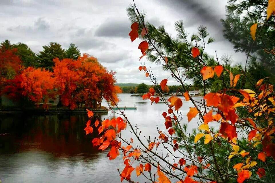 Johnson S Pond Coventry Ri Landscape Newport Rhode Island Coventry