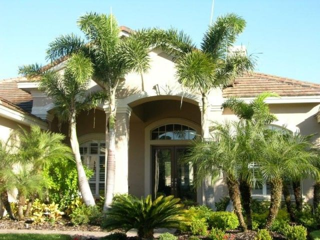 Front Yard Landscaping Ideas With Big Palm Trees For Your House