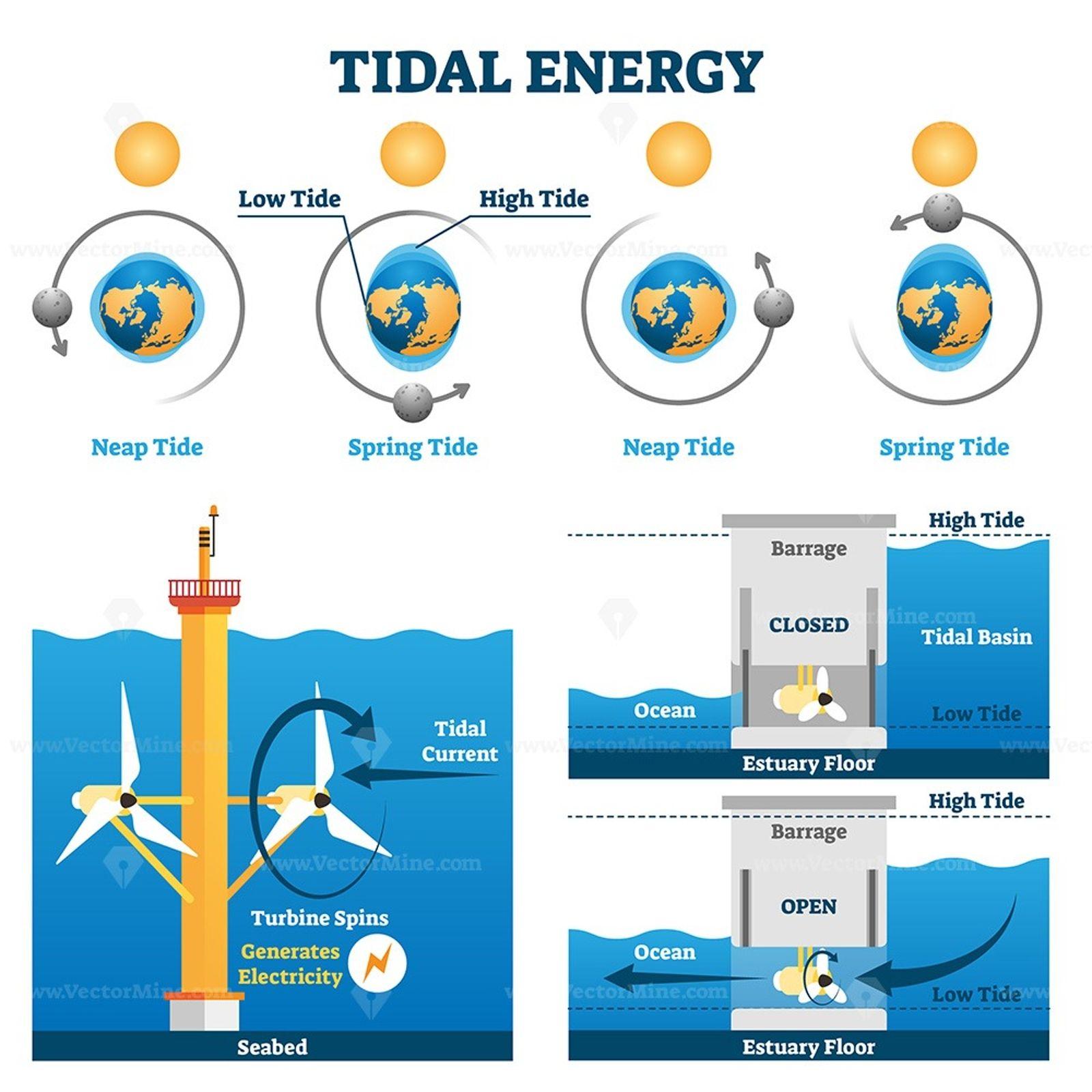 Tidal energy vector illustration Tidal energy, Tidal