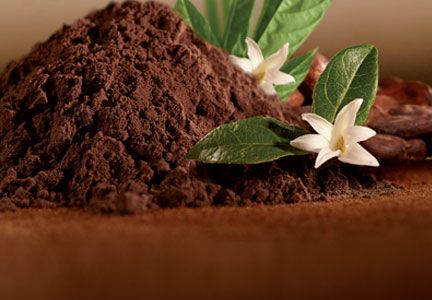 deZaan launches non-alkalized dark cocoa powder | Food Business News