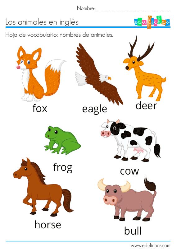 Animales En Inglés Vocabulario Ejercicios Flashcards Animales En Ingles Ingles Para Preescolar Ingles Basico Para Niños