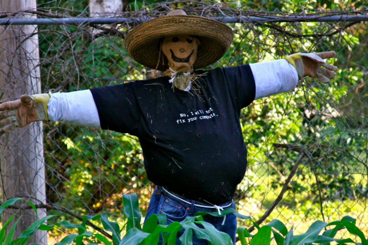How to Make a Scarecrow Without Involving Any Money or Actual Skill.