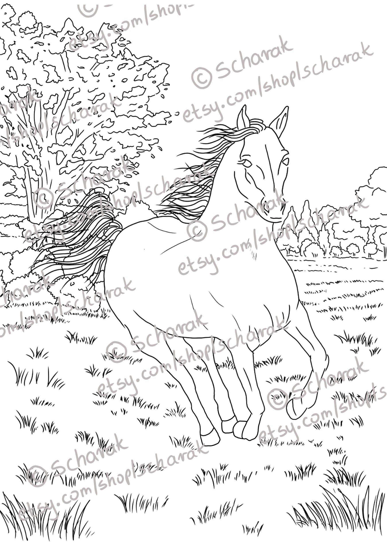 Horse Printable Coloring Page Original Artworks Kolorowanki Illustration Etsy