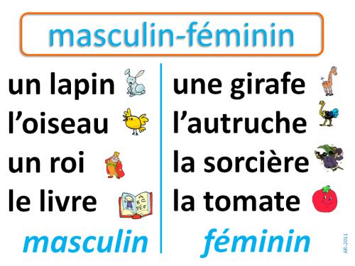 Le genre du nom: masculin féminin   Grammaire ce1, Evaluation ce1 et Ce1