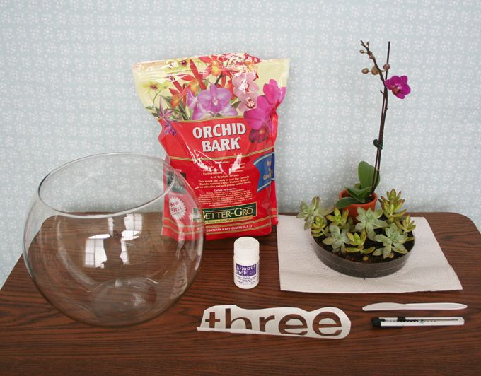 Etched Glass Project Diy Fun Projects Terrarium Centerpiece