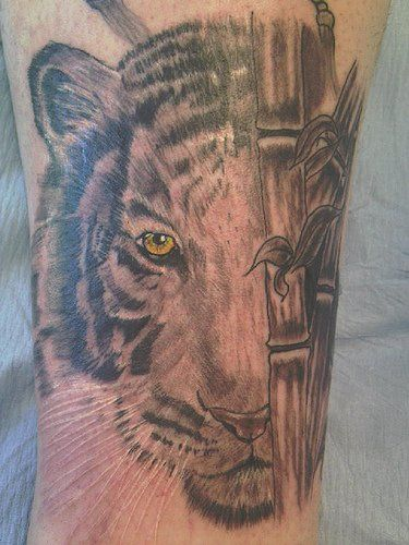 b432e03d87f50 Tiger in bamboo forest tattoo | Tiger | Forest tattoos, Tattoos, Bamboo