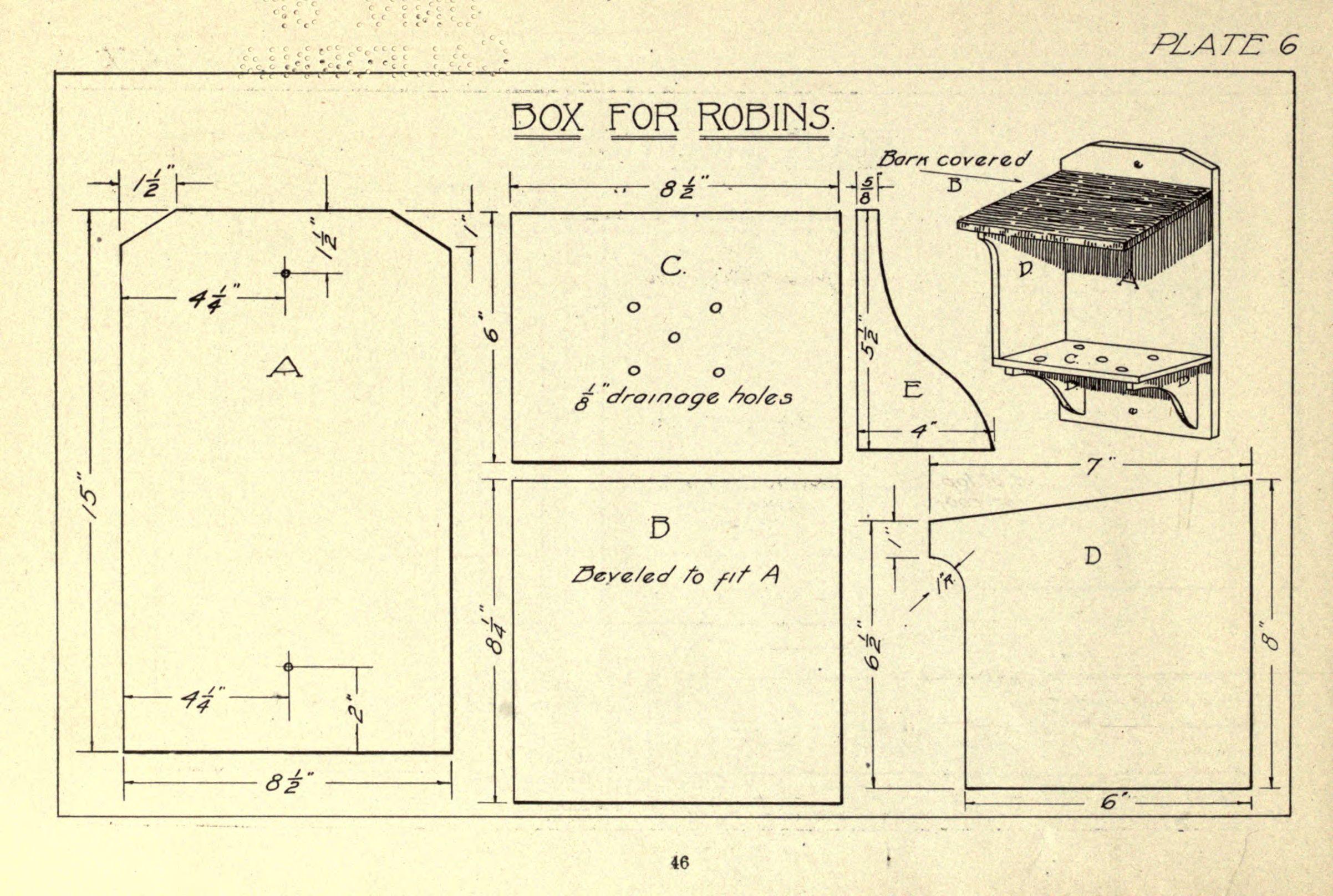 Terrific Birdhouse Boy Bird House Architecture C1920 Download Free Architecture Designs Scobabritishbridgeorg