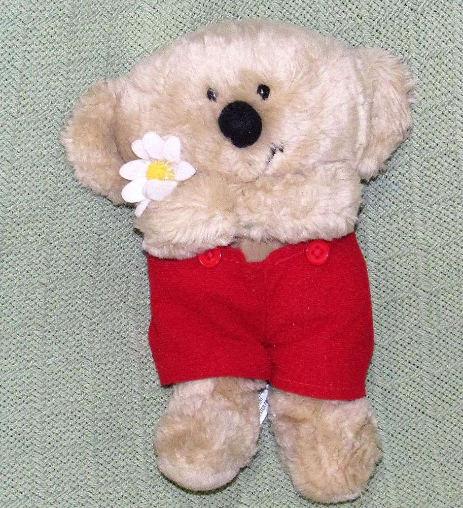 American greetings boomerang koala bear plush stuffed animal daisy american greetings boomerang koala bear plush stuffed animal daisy red overalls americangreetings m4hsunfo